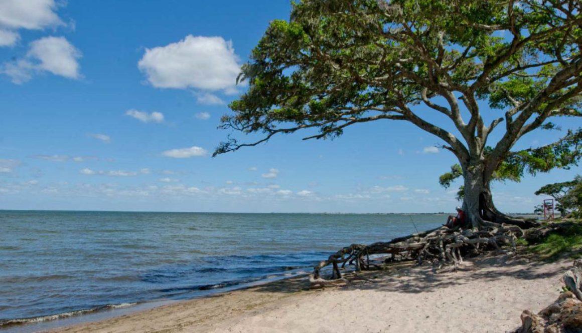 Bela Cidade no Rio Grande do Sul mas oque fazer em Pelotas